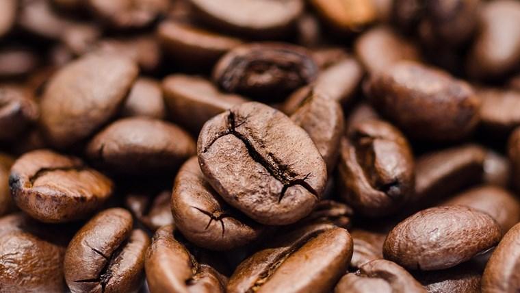 エクアドル産のコーヒー豆