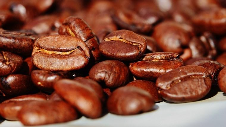 パナマのコーヒー豆